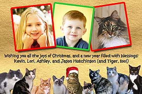 Cats Christmas Photo Card