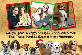 Dogs Christmas Photo Card
