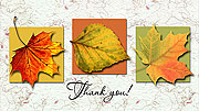 Folding Printable Fall Colors Thank You Cards