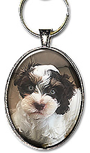 Sample of a custom Oval Photo keychain or necklace from your photo. A name or date can be added.